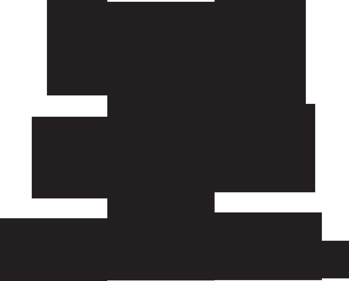Viajero Inmóvil - Difusión de grupos progresivos independientes